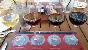 Cooper's Hawk Winery, Tampa